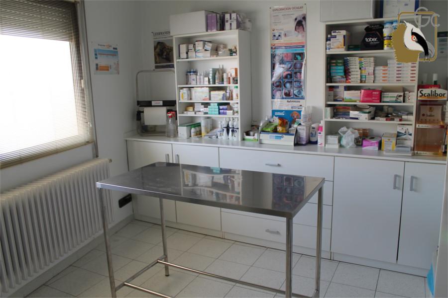 Clinica Veterinaria Santiago Melero